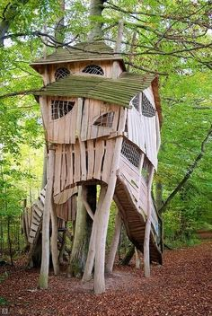 Crooked Tree House on The Owner-Builder Network http://theownerbuildernetwork.co/wp-content/blogs.dir/1/files/tree-houses-1/Crocked-Tree-House.jpg