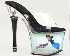 Wow! Sandal May Aquarium - Funny Bizarre