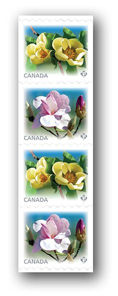 Canada Post - Magnolias:Issue Date: March 4,2013.