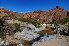 Pack a picnic and sit by the water at Indian Canyons, Palm Springs, Calif.