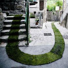 I need this grassy walkway for walking my dogs