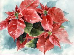Types of Houseplant Bugs and Methods to Check Their Infestation Poinsettia - 10 X 8 Watercolor Christmas Cards, Christmas Drawing, Christmas Paintings, Watercolor Cards, Watercolor Illustration, Watercolor Flowers, Watercolour, Christmas Poinsettia, Christmas Flowers