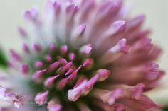 Untitled by dancingdrumha #nature #photooftheday #amazing #picoftheday