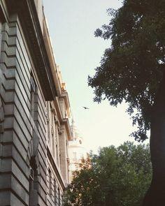 Volviendo a casa #instapic #instashot #instaphoto #instamoment #instamood #summertime #atardecer #evenning #street #sidewalk #contrastes #contrast #urbanlife #citylife #city #sky #ciel #cielo...