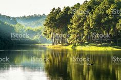 pang ung, reflet de PIN dans un lac photo libre de droits