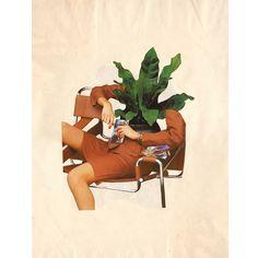 Cara planta // Plant face    Paper collage 42x30cm