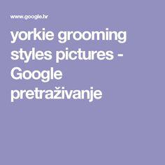 yorkie grooming styles pictures - Google pretraživanje