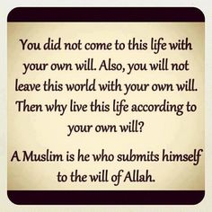 Submit your will to the Will of Allah  {http://www.purematrimony.com/}