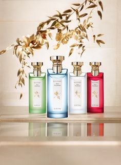 b41472dc85039 Bvlgari Eau Parfumée Collection 2015 from yakymour.wordpresscom Bvlgari  Green Tea, Bvlgari Eau Parfumee