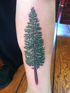Douglas Fir Done By Lewis Hess At Atlas Tattoo In Portland OR.