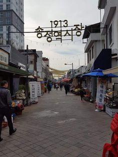 안동에서 전주, 군산까지 | 코리일보 | CoreeILBO