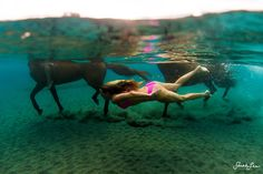 Photographer Captures Epic Swim With Horses In Dominica