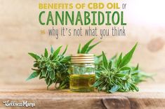 If you have chronic pain, inflammation, attention deficit, poor sleep, or out of whack hormones, CBD oil may be able to help! Learn why this product of the cannabis plant actually isn't as controversial as its name suggests.