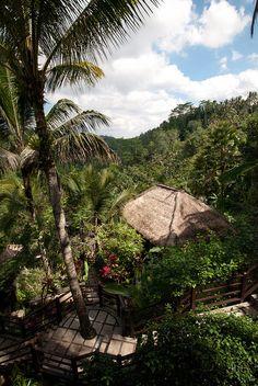 Ubud Hanging Gardens #ubud #indonesia #travel