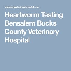 Heartworm Testing Bensalem Bucks County Veterinary Hospital