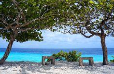 7 'Must Dive' Sites of Bonaire