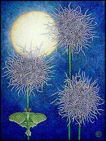 Amy E. Fraser's Night Garden Paintings