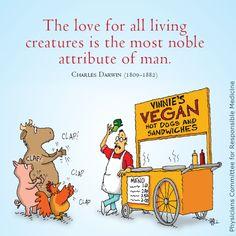 vegan-ism is appreciated!