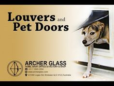 Gerry Whelan is back this month for another informative interview about louvers and pet doors. Pet Door, Door Tags, Safety Glass, Best Investments, Interview, About Me Blog, Doors, Archer, Pets