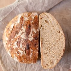 Sourdough made with millet and whole wheat flours.