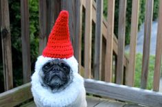 Garden Gnome Dog Hat Made to Order by Sweethoots on Etsy