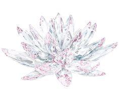 Lotus - Geschenke - Swarovski Online Shop