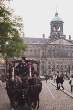 #amsterdam #oldtown #vsco #november #royalty #nostalgia #damsquare #netherlands #fall