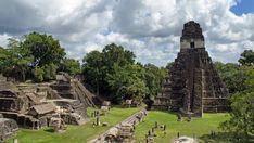'Digital Deforestation' reveals lost #Mayan city.