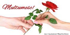 Felicitari de multumire - Multumesc! - mesajeurarifelicitari.com Herbs, Instagram Posts, Respect, Graphics, Facebook, Twitter, Art, Floor Cloth, Roses