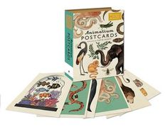 Animalium Postcards by Katie Scott (illustrator): Templar London 9781783706259 educational cards - Blackwell's Advent, Cicely Mary Barker, Thing 1, Card Book, Kawaii Stationery, Book People, Flower Fairies, Beautiful Drawings, Beautiful Images