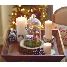 DIY Cloche with Deer Holiday Home Decor