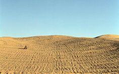 Dune Riding in Arizona