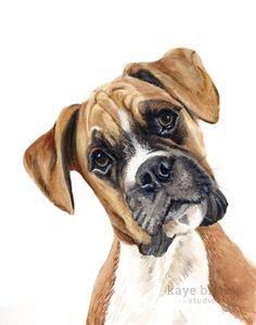Boxer Watercolor Painting, Animal Art, Boxer Painting, Boxer Watercolor, Boxer A. Art Watercolor, Watercolor Animals, Frida Art, Boxer Dogs, Boxers, Dog Portraits, Animal Paintings, Dog Art, Animals Beautiful