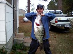 Below is the world record crappie caught by anglers just like yourself This information came from the IGFA The state record, 13 ¼-ounce, black crappie was pulled out of Lake Talquin. Crappie Fishing Tips, Carp Fishing, Trout Fishing, Saltwater Fishing, Kayak Fishing, Crappie Rigs, Fishing Lakes, Fishing Tackle, Cool Fish