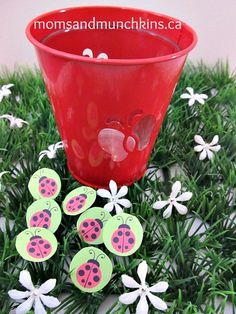 ladybug-birthday-activity...Instead do it with butterflies