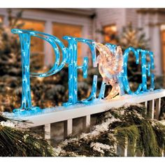 LED 'Peace' Outdoor Christmas Decoration with Holographic Dove