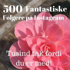 Sikke en dejlig milepæl  Nu er der over 500 søde sjove og helt igennem herlige mennesker der følger Mellow Way på Instagram Jeg elsker Jeres likes og skønne kommentarer... Tusind tak fordi I er med hver og én af jer... det betyder alverden for mig... #webshop #milepæl #500 #fantastiskemennesker #tusindtak #taknemmelig