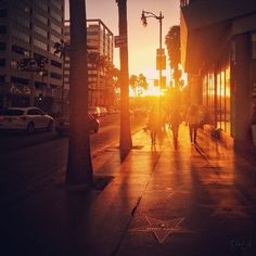 Hollywood Walk of Fame at sunset.