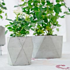 Make your own concrete flower pots! No heavy machinery or materials needed to create these geometric molds!