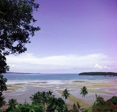 land for sale sea view 2400 sqm chanotte in koh mak island thailand