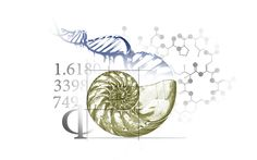 This is soo cool.  I love the way all the different elements combine to one beautiful picture.  I would love this as a tattoo. The DNA and the Molecules represent the Life and the human body and the Nautilus represents the Golden Ratio