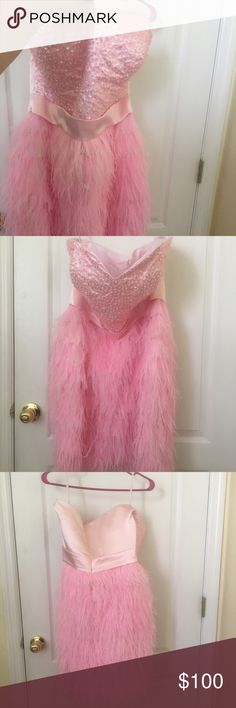 Adorable Pink Feather Dress plus size (14/16) Never worn... Gorgeous above the knee length, strapless feather dress.  This dress will immediately make you feel in style.  Perfect for prom, weddings, or any other special event.  Perfect sweetheart neckline with beautiful beading & lots of fun feathers. Dresses Wedding