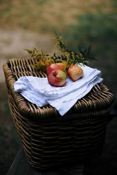 Sylvia's Simple Life: One Fine Day Gray Garden, Vie Simple, Mourning Dove, Apple Orchard, Apple Farm, Autumn Cozy, One Fine Day, Harvest Time, Apple Tree