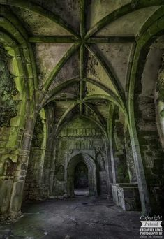 Kilcooley Abbey in Co.Tipperary by Liam McNamara