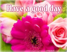 Have a Good Day - Free Photos, Wishes, Images. #EverydayEcards, #GoodDayWishes, #GOODMORNING, #MorningMessages http://greetings-day.com/have-a-good-day-free-photos-wishes-images.html