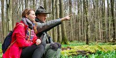 Der wilde Wald von Thüringen   Thüringen Blog — THÜRINGEN ENTDECKEN
