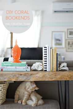 Stunning DIY Coral Bookends for 2 Dollars! | Up To Date Interiors for Home Made by Carmona