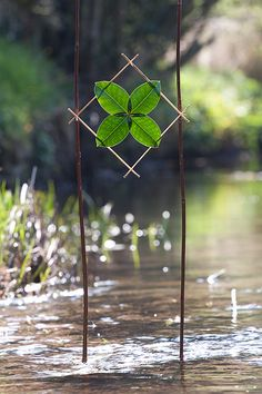 Holly Star, artist. This was made for the Land Art Connections Project April 2010 - Theme Shadows on 17th April 2010 at Burrow Beck, Lancaster, UK.