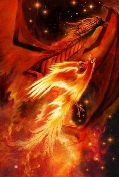 Phoenix and dragon Phoenix Dragon, Phoenix Art, Phoenix Rising, Tattoo Phoenix, Mythical Creatures Art, Mythological Creatures, Fantasy Creatures, Fantasy Dragon, Dragon Art