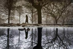 Mark Blinch/Reuters SEEING DOUBLE: A woman was reflected in a puddle as she walked her dog in Toronto on Saturday.